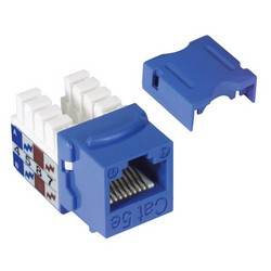 Picture of Category 5E Keystone Jack 110/RJ45 EIA568A/B Blue